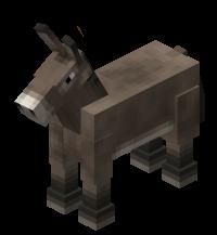 200px-Donkey[1]