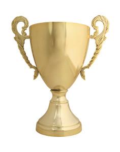 Pokal-201100282074[1]